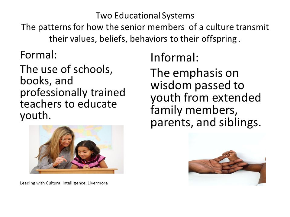 Two Educational Systems The patterns for how the senior members of a culture transmit their values, beliefs, behaviors to their offspring .