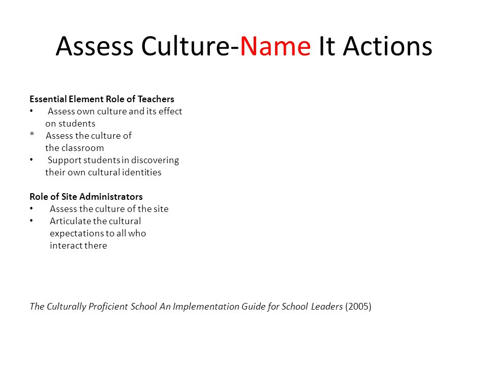Assess Culture-Name It Actions