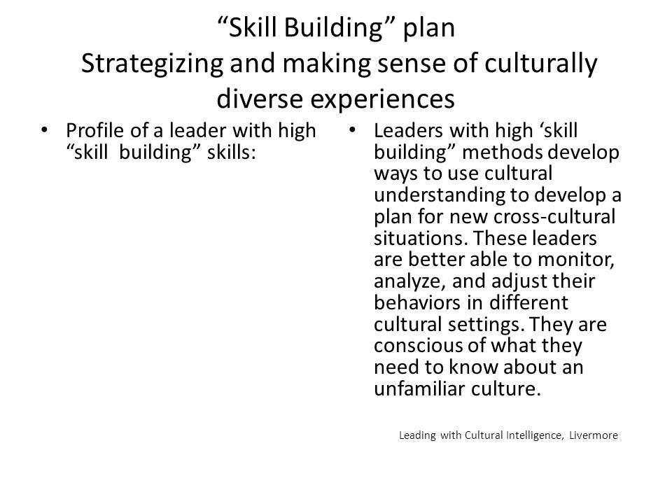 Skill Building plan Strategizing and making sense of culturally diverse experiences