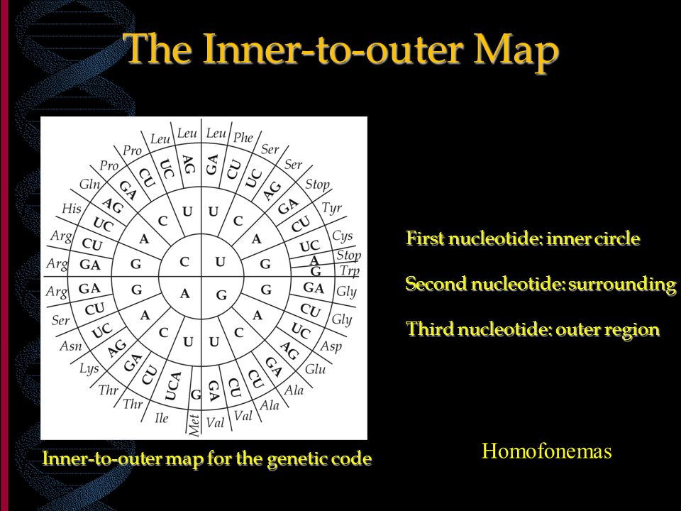 The Inner-to-outer Map