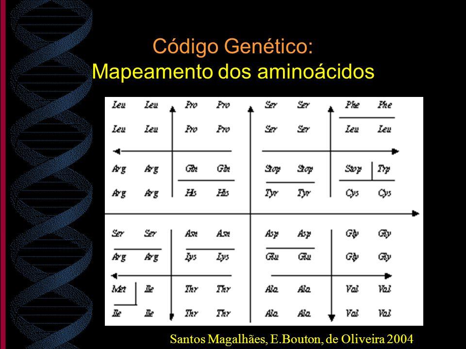 Código Genético: Mapeamento dos aminoácidos