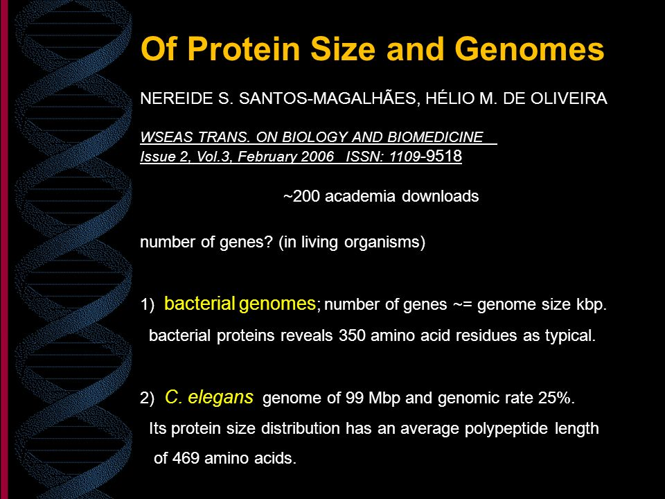 Of Protein Size and Genomes