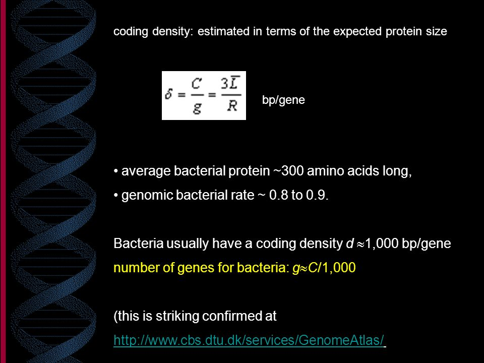 average bacterial protein ~300 amino acids long,