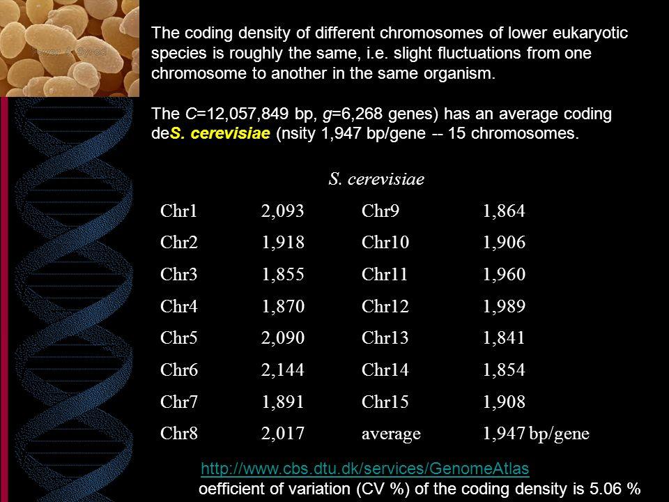 S. cerevisiae Chr1 2,093 Chr9 1,864 Chr2 1,918 Chr10 1,906 Chr3 1,855