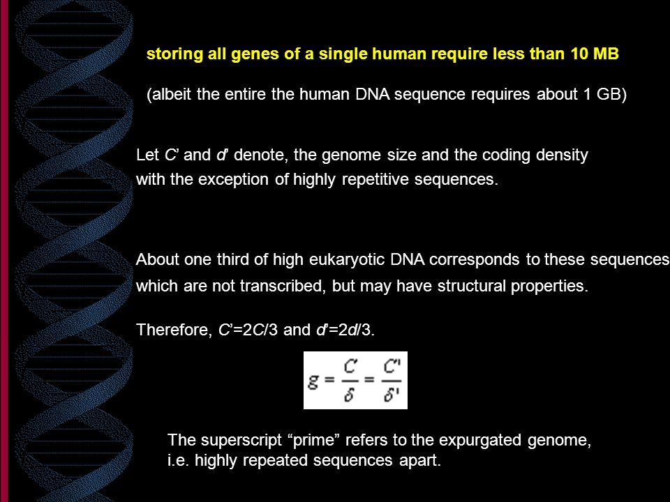 storing all genes of a single human require less than 10 MB