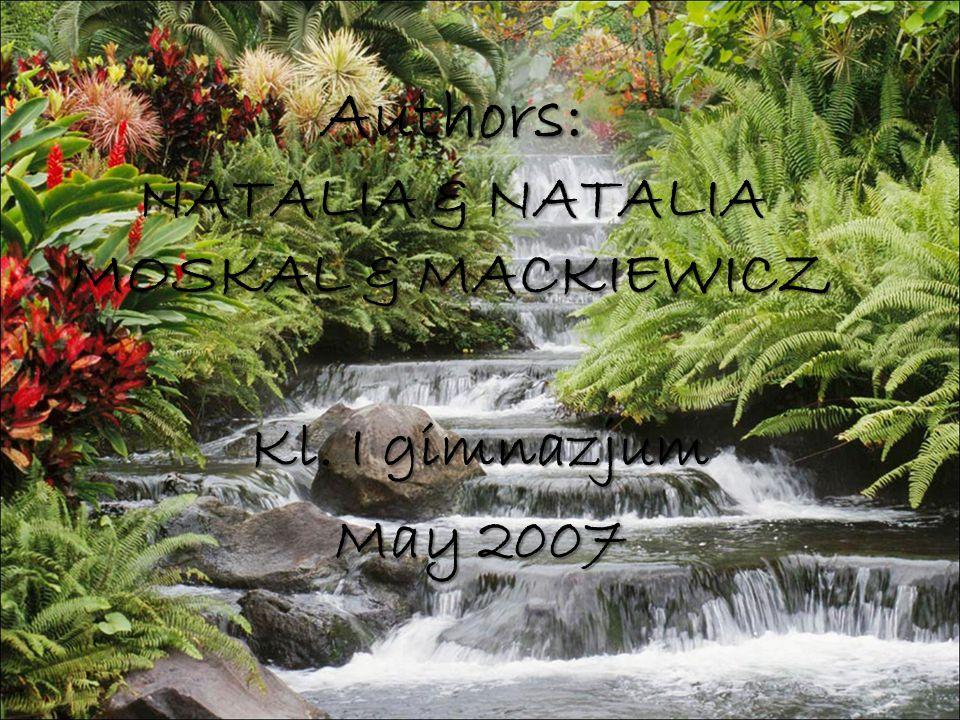 Authors: NATALIA & NATALIA MOSKAL & MACKIEWICZ