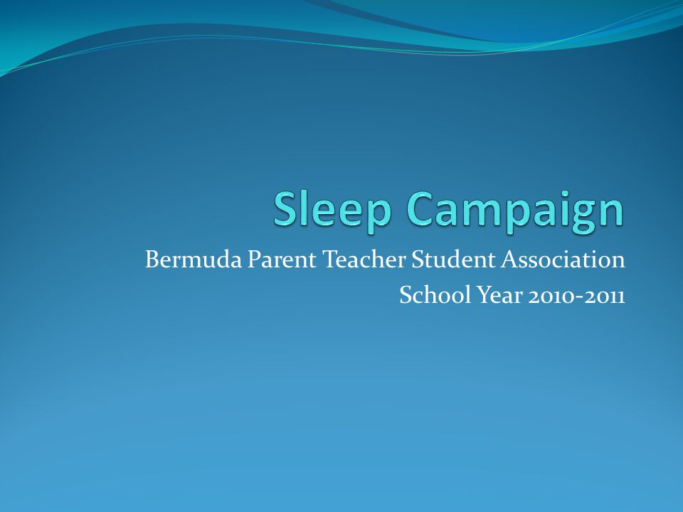 Bermuda Parent Teacher Student Association School Year 2010-2011