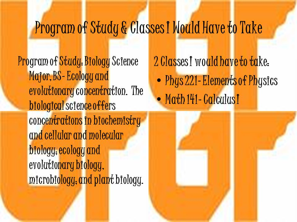 Program of Study & Classes I Would Have to Take