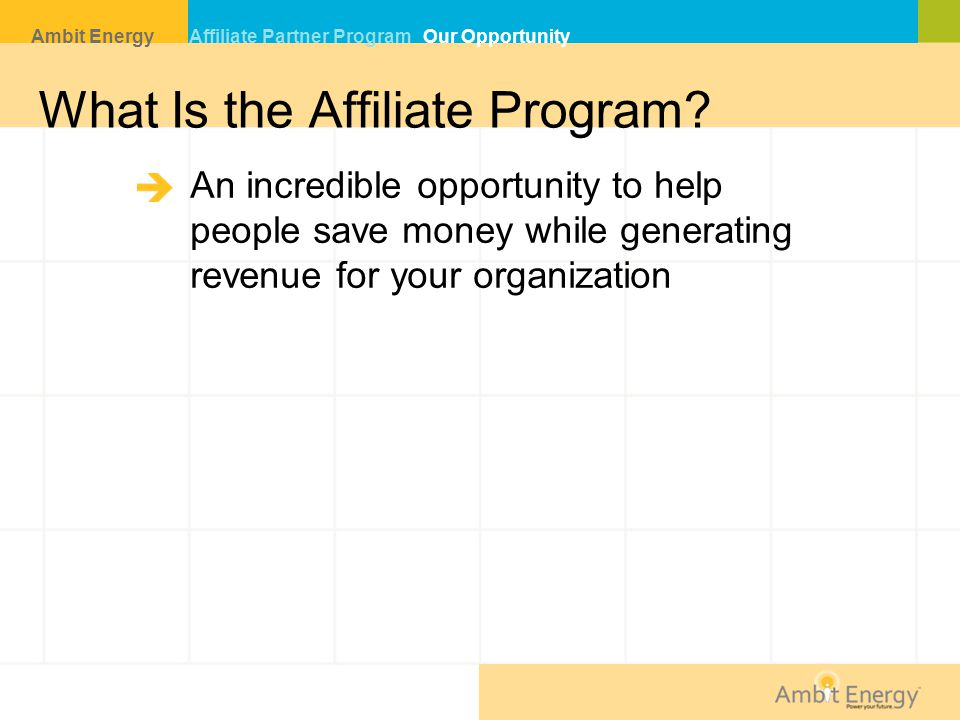 What Is the Affiliate Program