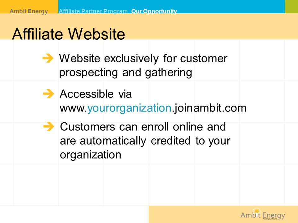 Affiliate Website Website exclusively for customer
