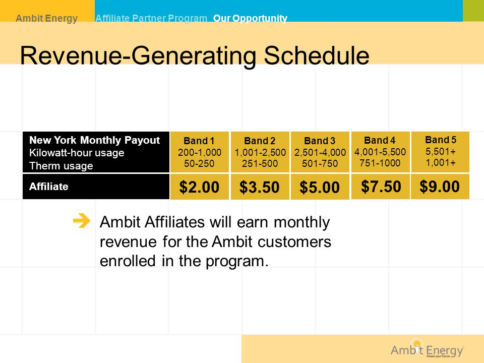 Revenue-Generating Schedule