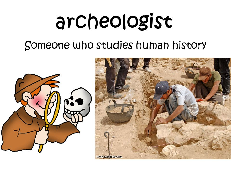Someone who studies human history