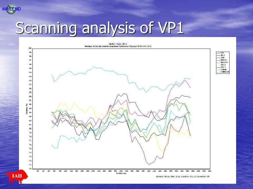 Scanning analysis of VP1