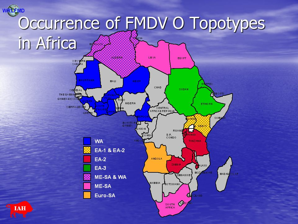 Occurrence of FMDV O Topotypes in Africa
