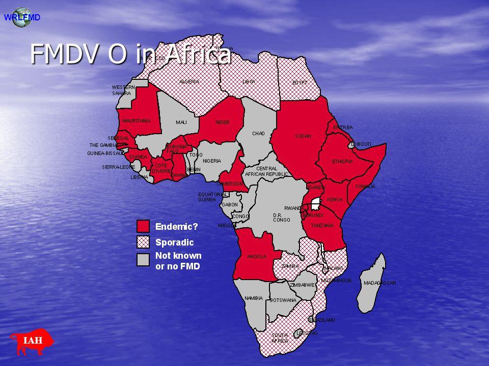 WRLFMD FMDV O in Africa IAH