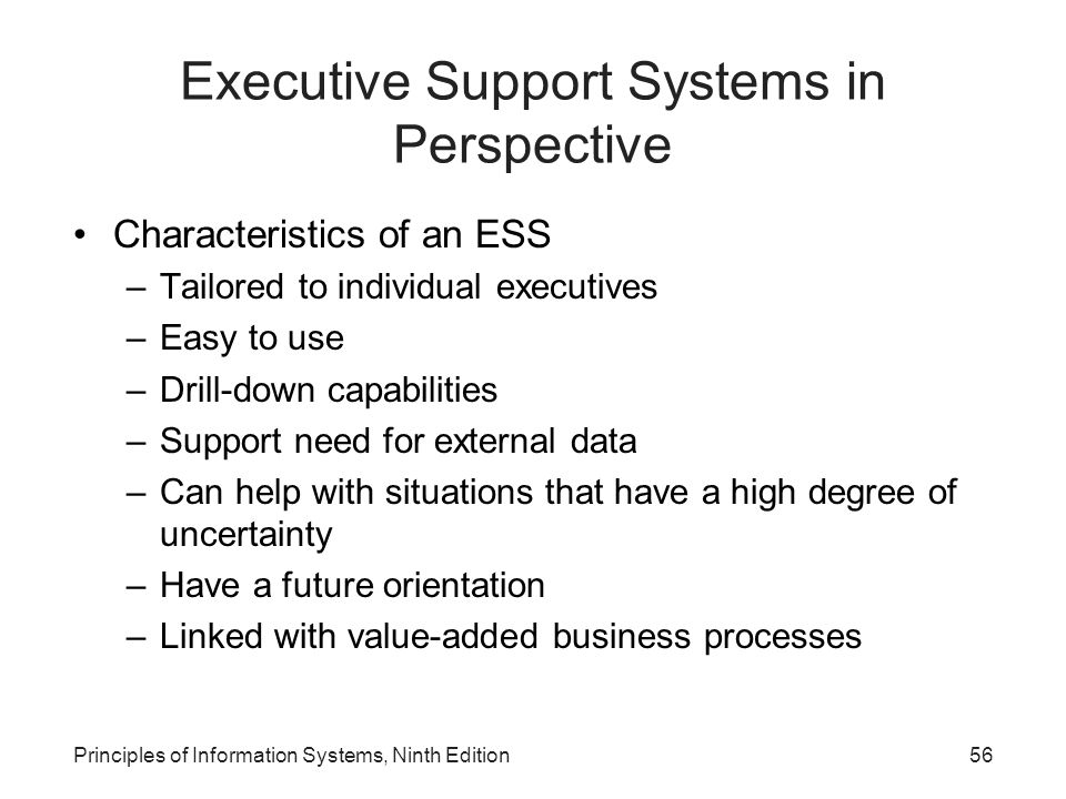 Executive Support Systems in Perspective
