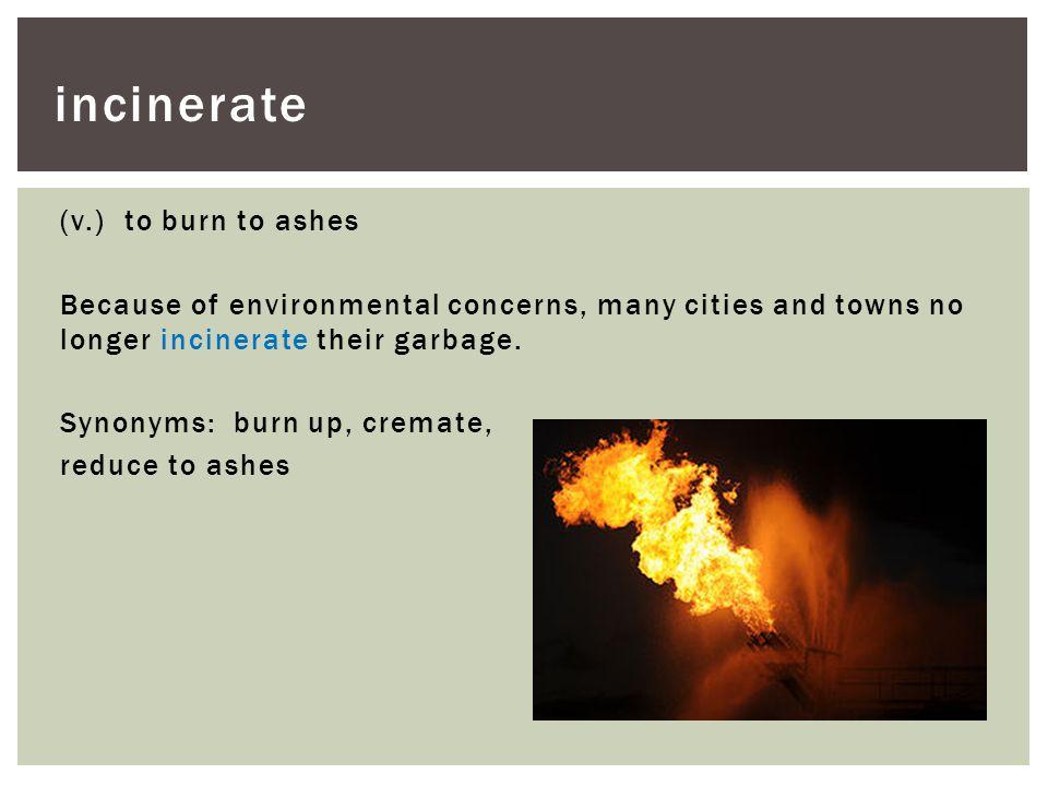 incinerate