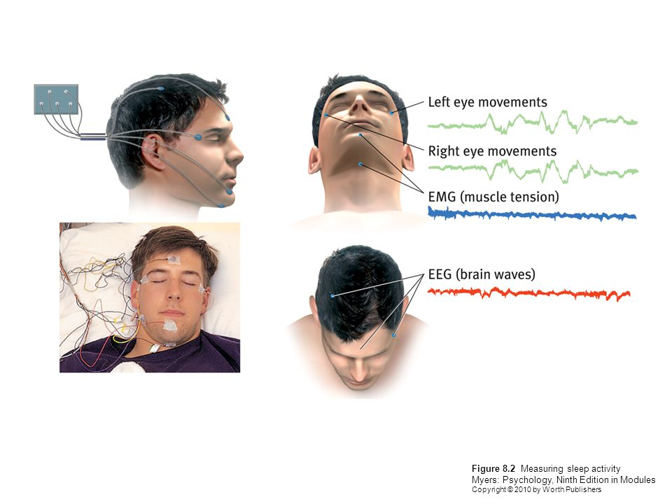 Figure 8.2 Measuring sleep activity Myers: Psychology, Ninth Edition in Modules Copyright © 2010 by Worth Publishers