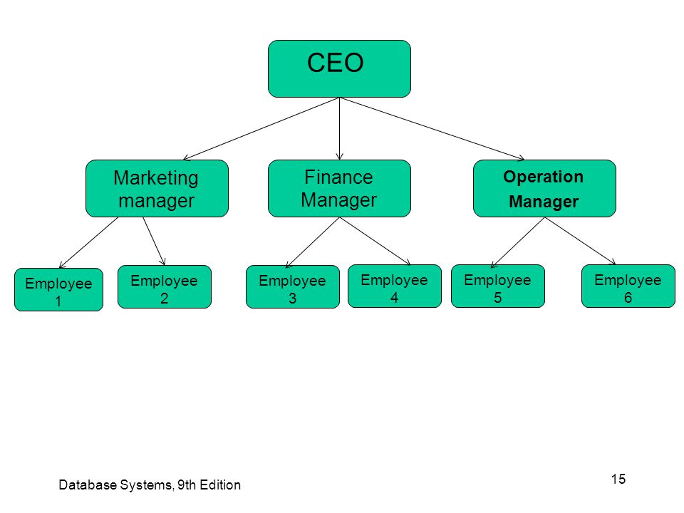 CEO Marketing manager Finance Manager Operation Manager Employee 1