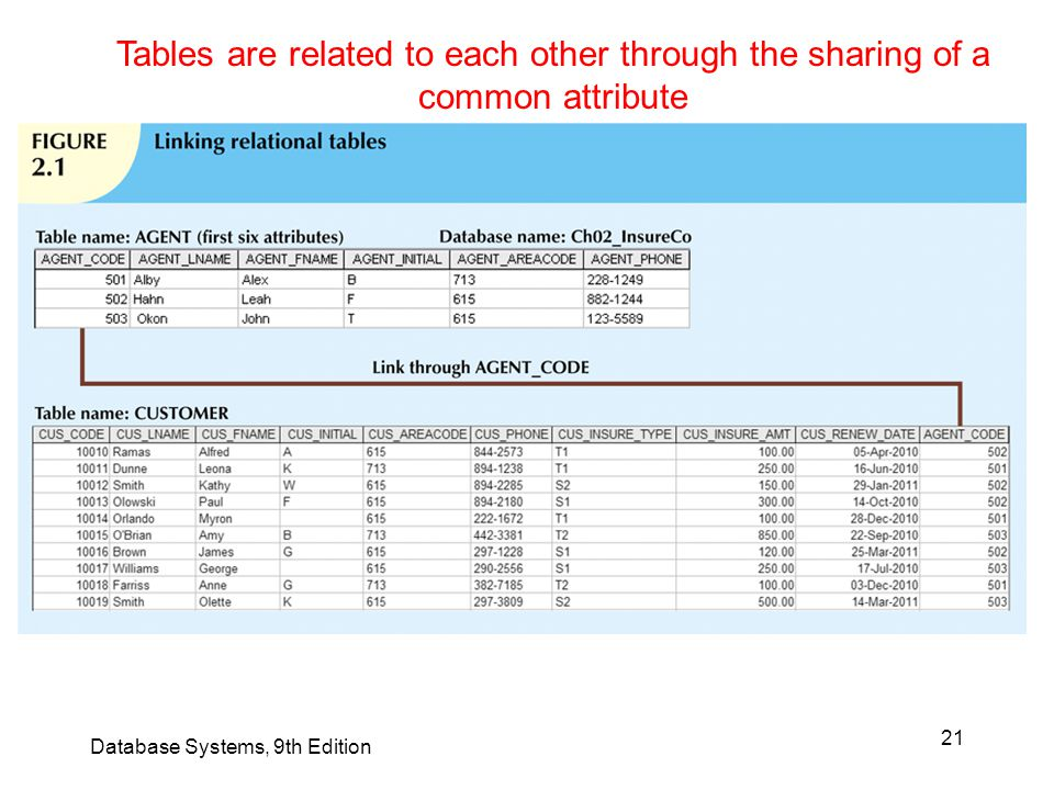 Tables are related to each other through the sharing of a common attribute