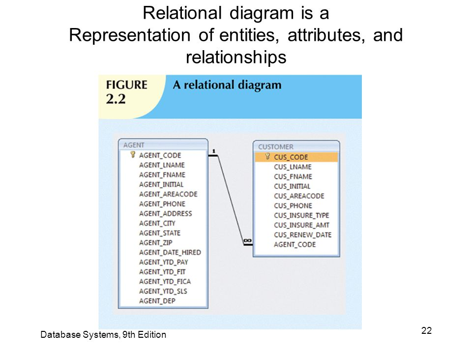 Relational diagram is a Representation of entities, attributes, and relationships