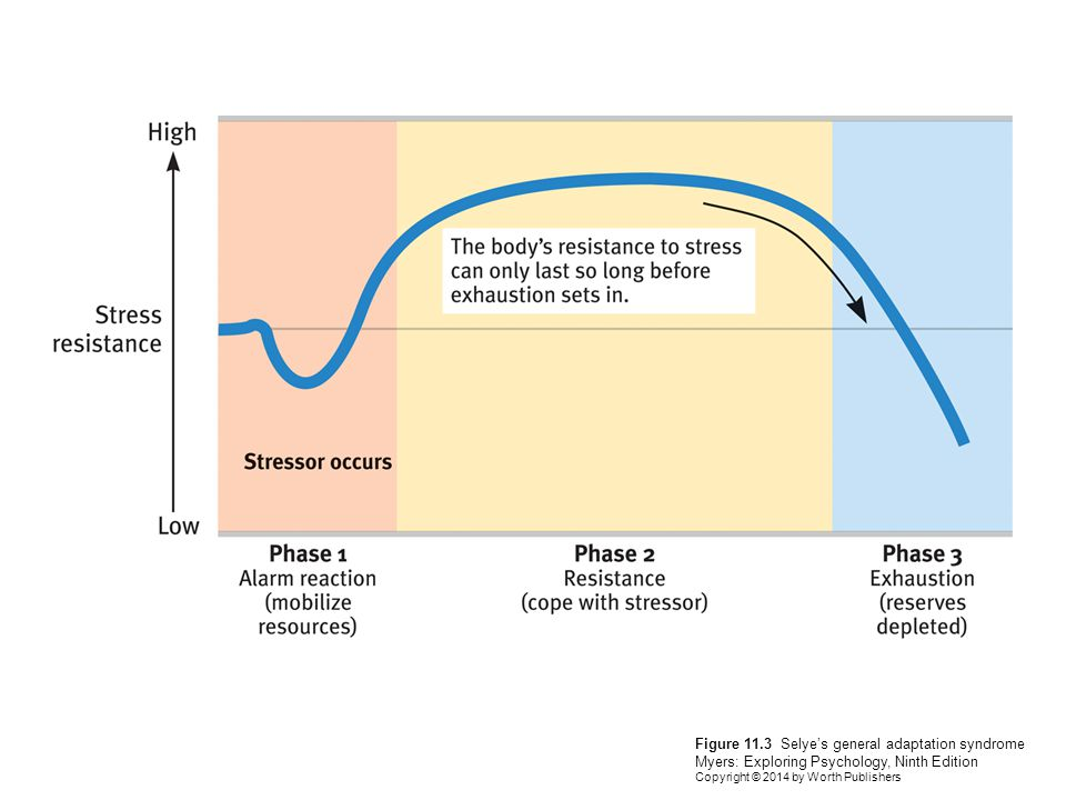 Figure 11.3 Selye's general adaptation syndrome Myers: Exploring Psychology, Ninth Edition Copyright © 2014 by Worth Publishers