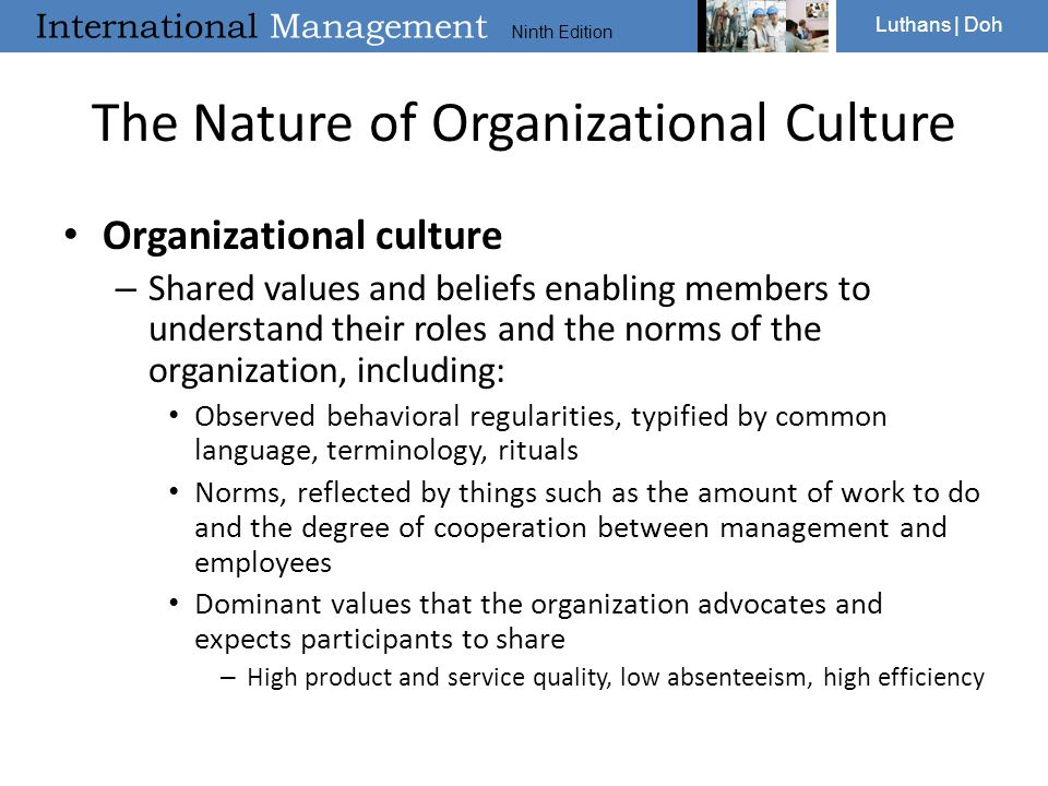 The Nature of Organizational Culture