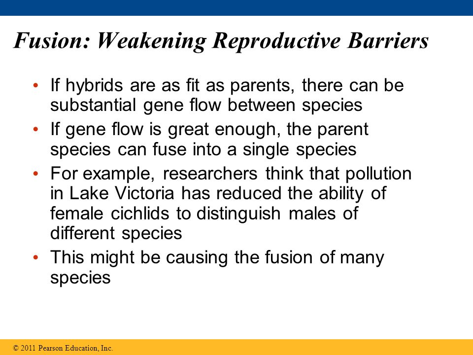 Fusion: Weakening Reproductive Barriers