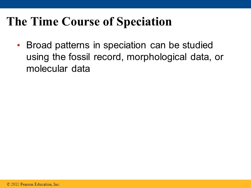 The Time Course of Speciation