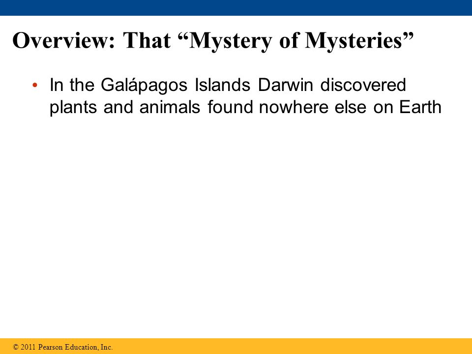 Overview: That Mystery of Mysteries