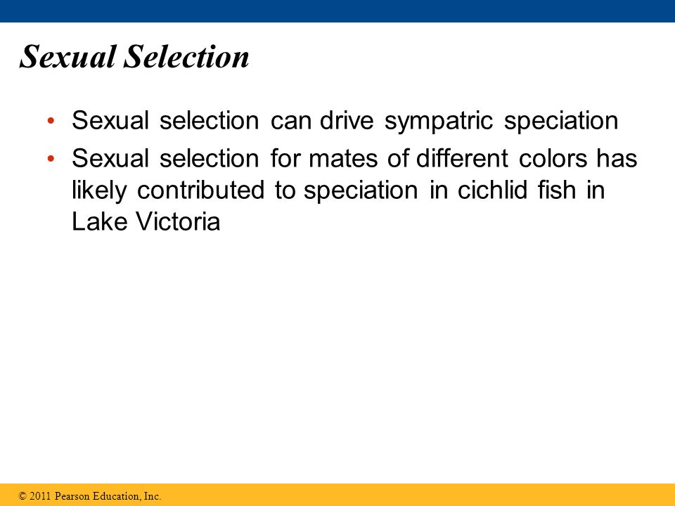 Sexual Selection Sexual selection can drive sympatric speciation