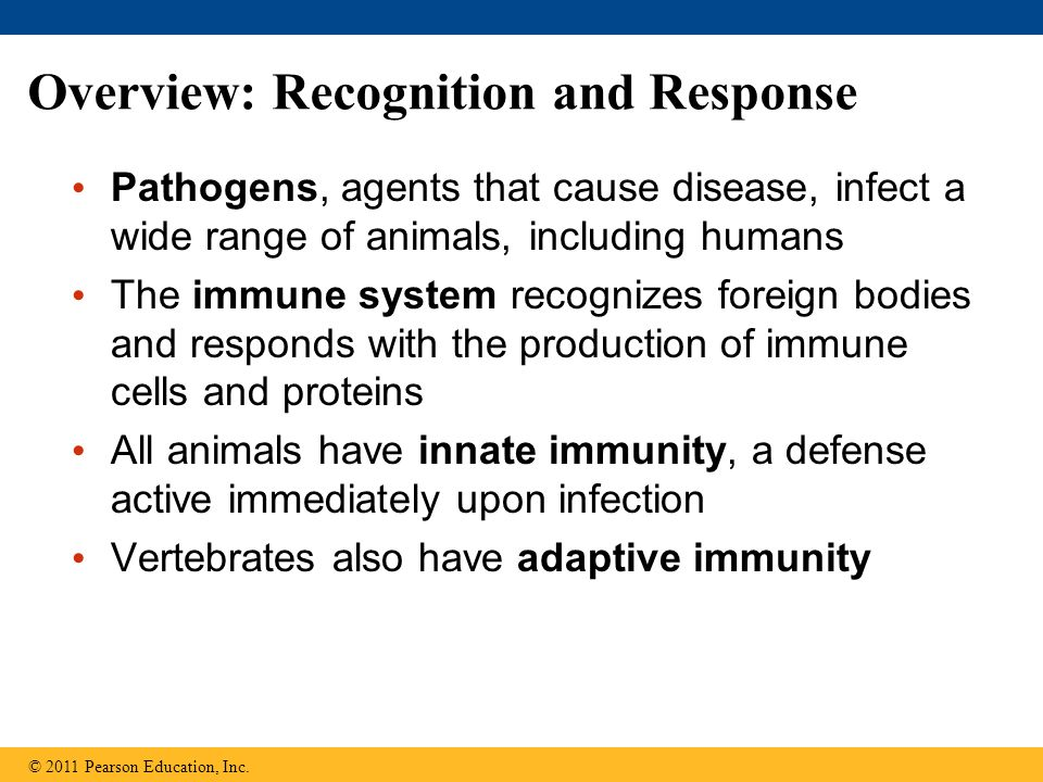 Overview: Recognition and Response