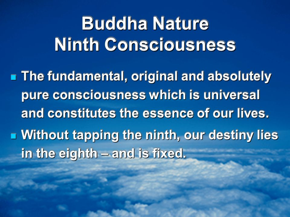 Buddha Nature Ninth Consciousness