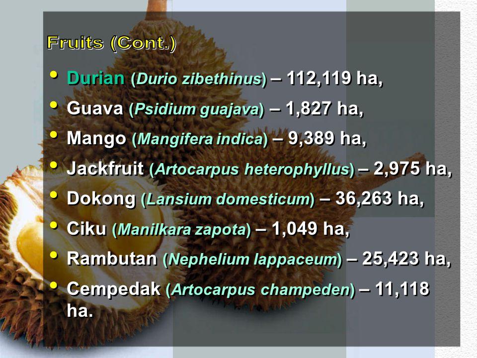 Fruits (Cont.) Durian (Durio zibethinus) – 112,119 ha,