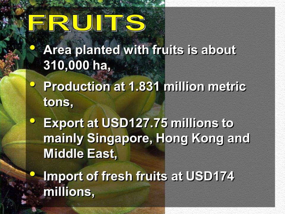 FRUITS Area planted with fruits is about 310,000 ha,