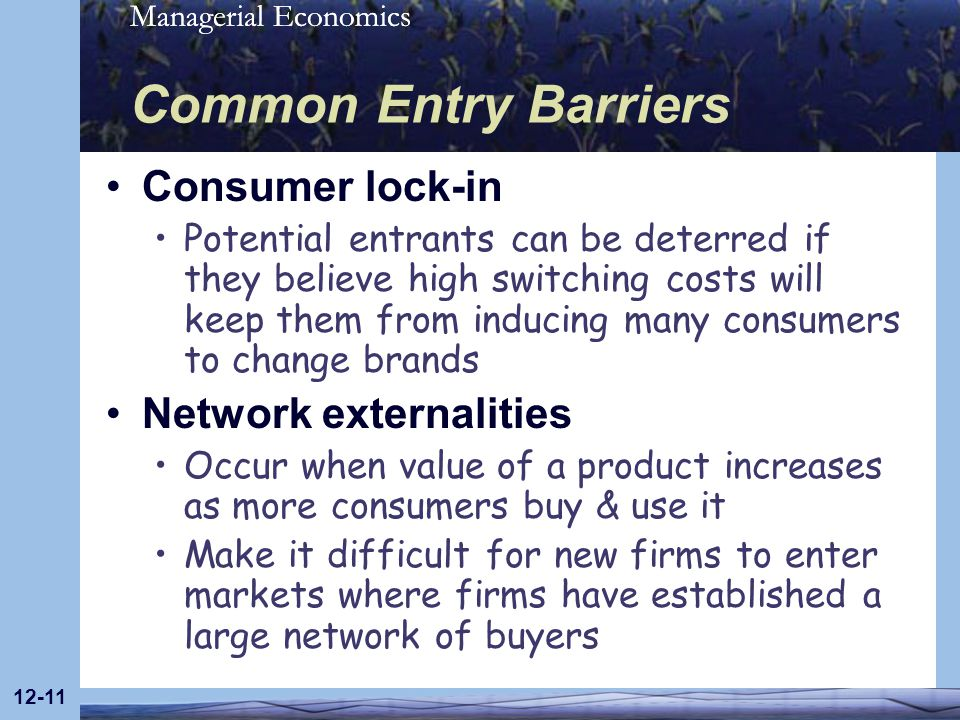 Common Entry Barriers Consumer lock-in Network externalities