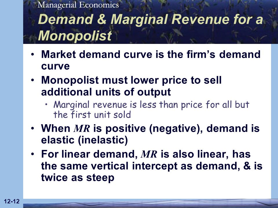 Demand & Marginal Revenue for a Monopolist