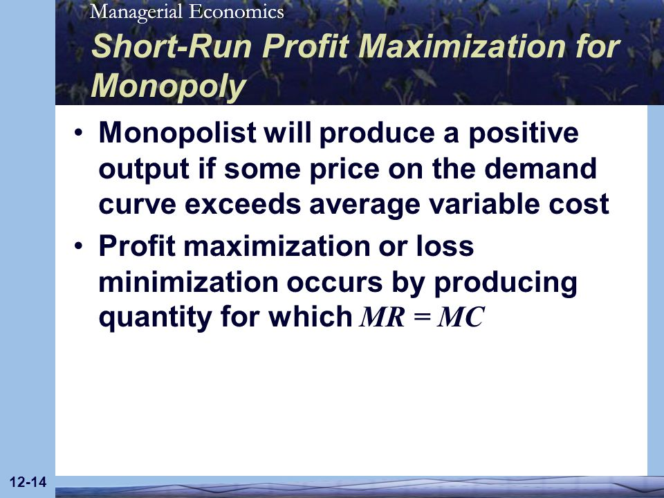 Short-Run Profit Maximization for Monopoly