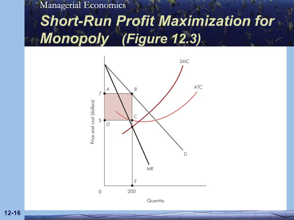 Short-Run Profit Maximization for Monopoly (Figure 12.3)