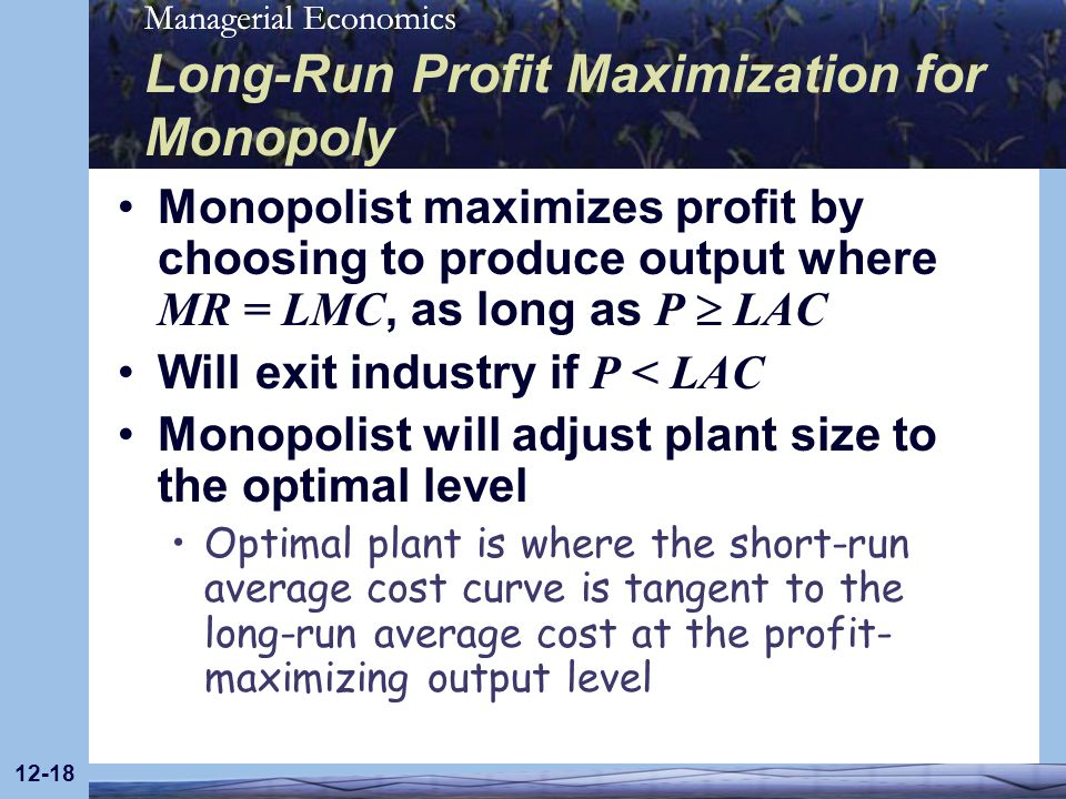 Long-Run Profit Maximization for Monopoly
