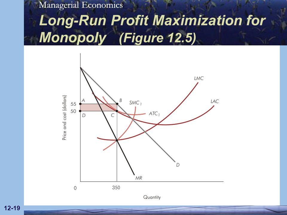 Long-Run Profit Maximization for Monopoly (Figure 12.5)
