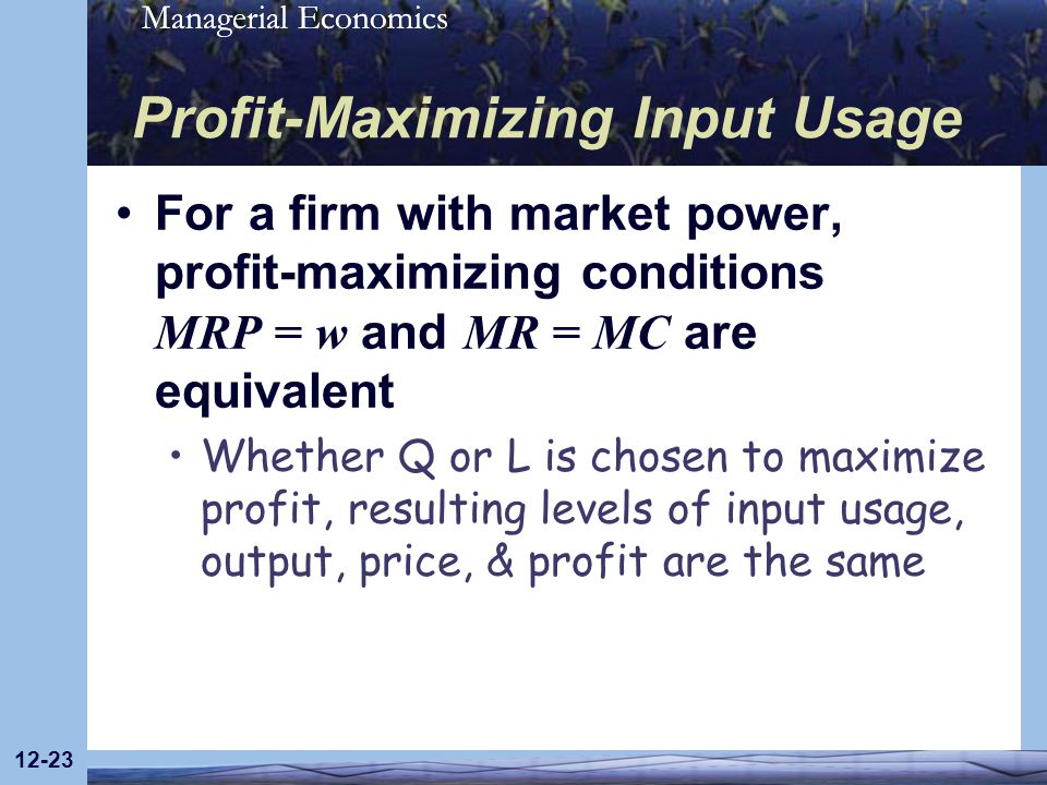 Profit-Maximizing Input Usage