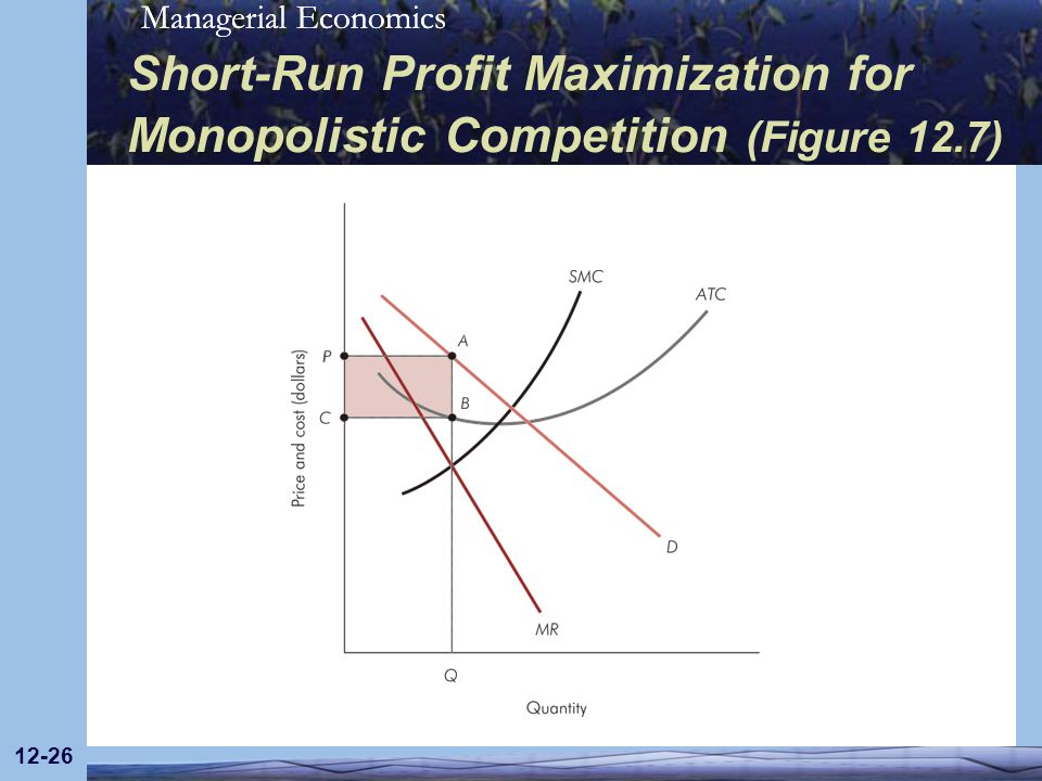 Short-Run Profit Maximization for Monopolistic Competition (Figure 12