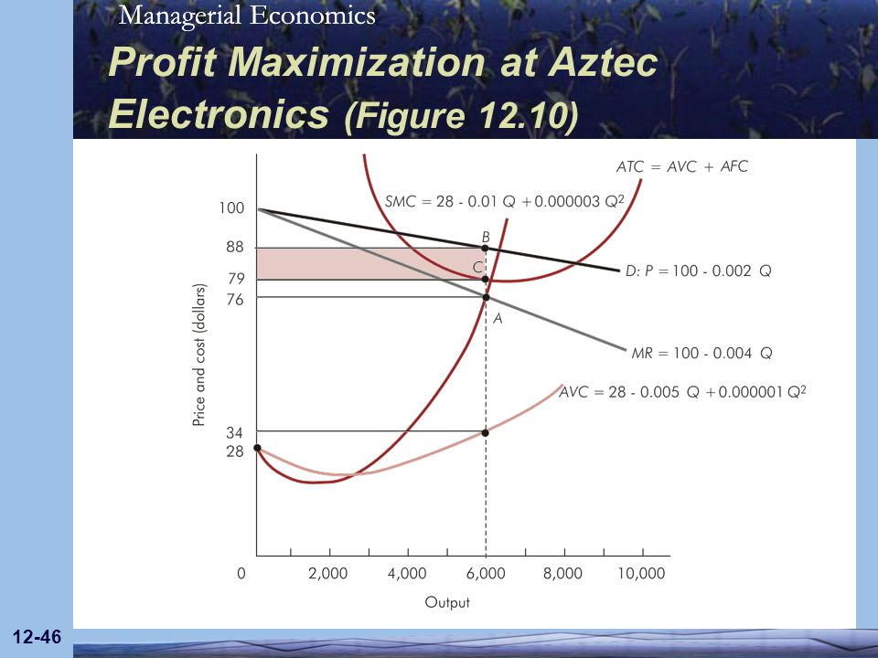 Profit Maximization at Aztec Electronics (Figure 12.10)