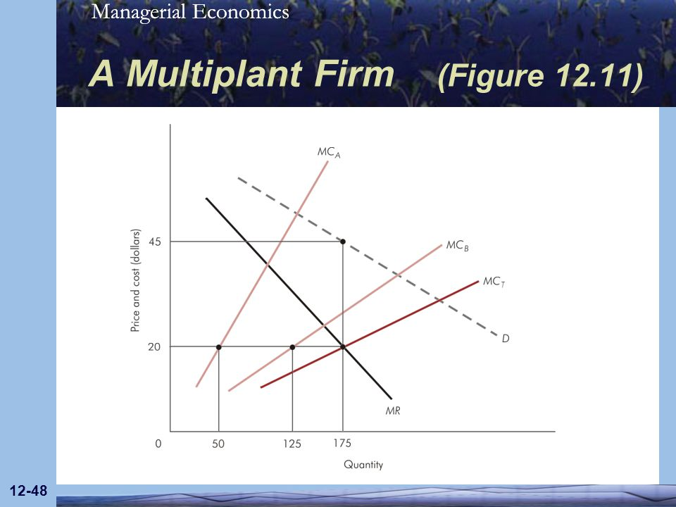 A Multiplant Firm (Figure 12.11)