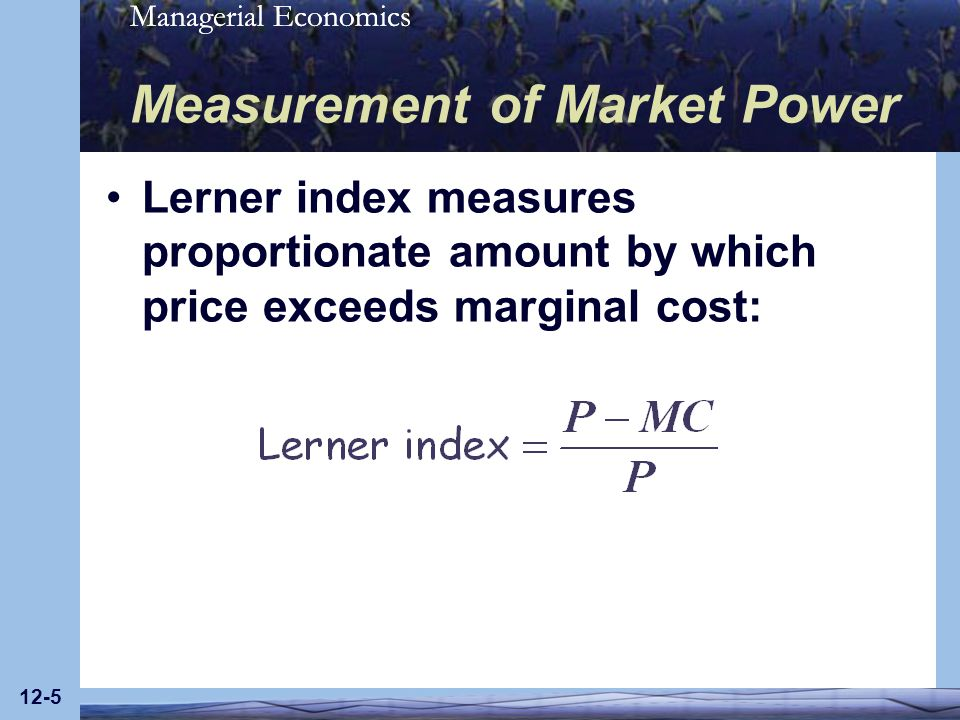Measurement of Market Power