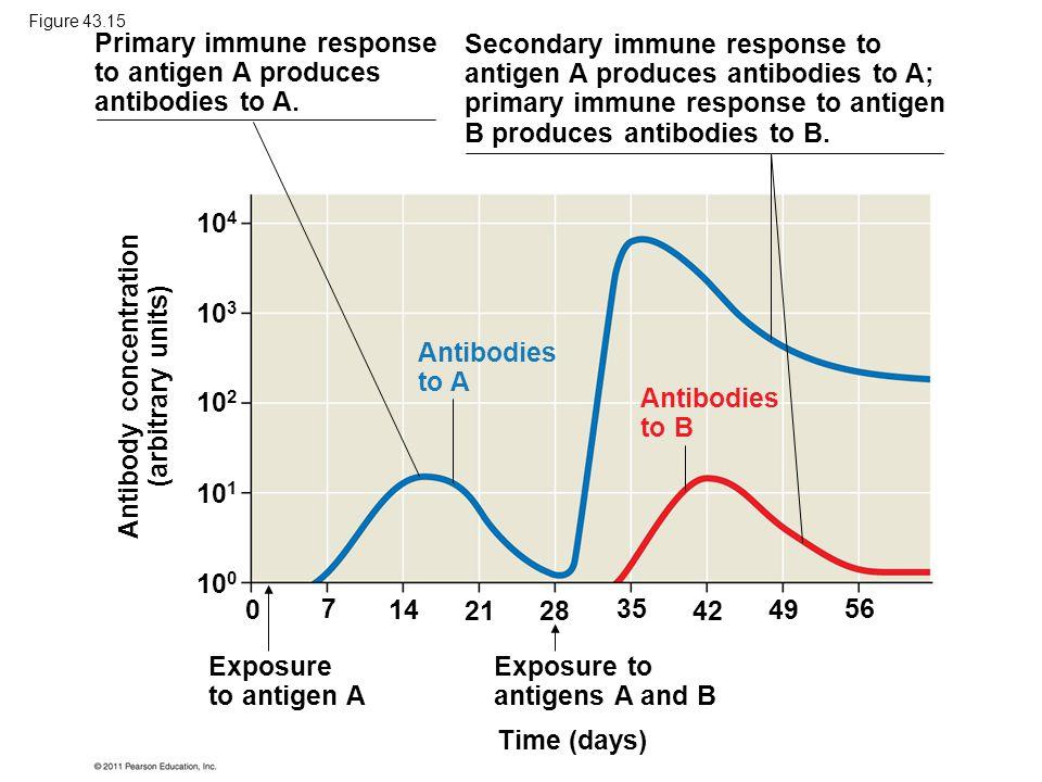 Antibody concentration (arbitrary units)