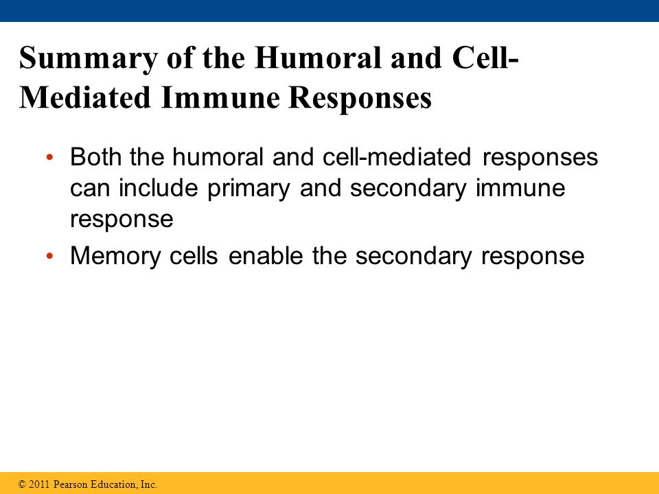 Summary of the Humoral and Cell-Mediated Immune Responses