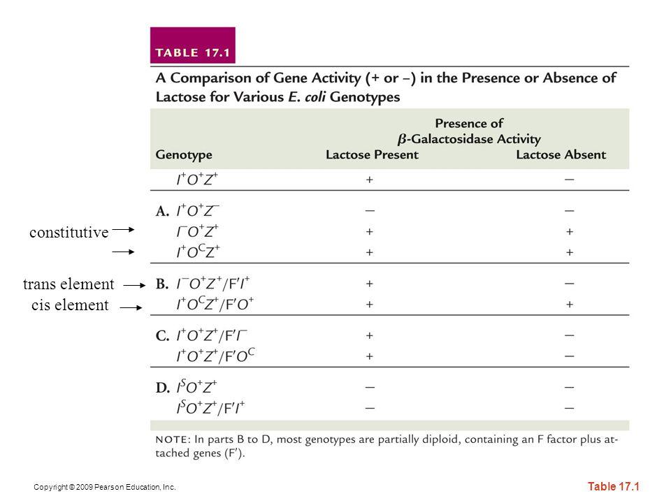 constitutive trans element cis element