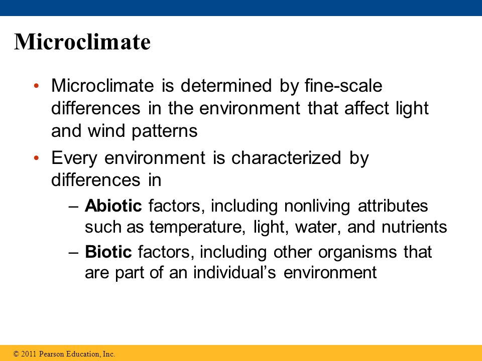 Microclimate Microclimate is determined by fine-scale differences in the environment that affect light and wind patterns.